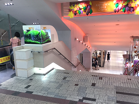 東京中央美容外科新宿院丸ノ内線ルート03